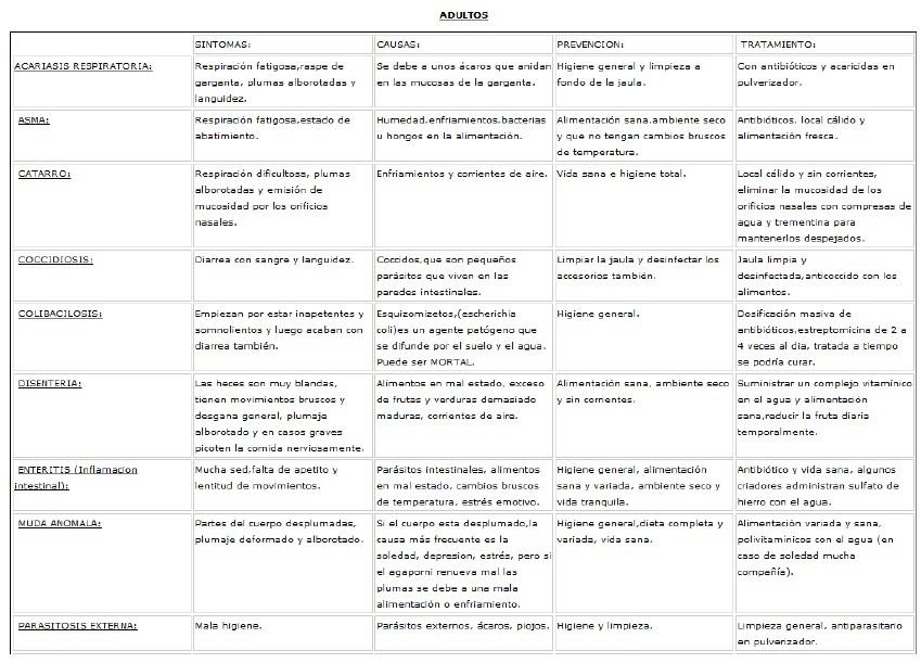 listado enfermedades agapornis 1